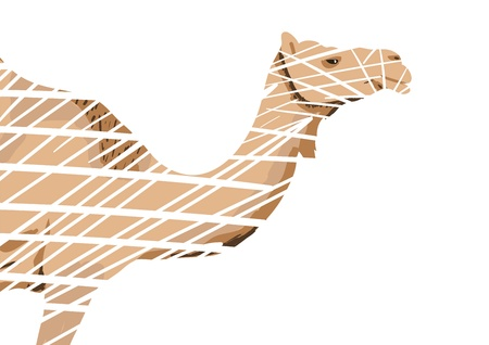 Abstract Camel Vector