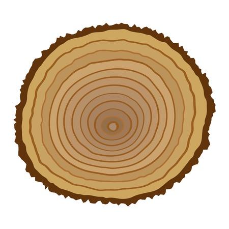 tree cross section: Cross section of tree stump Illustration