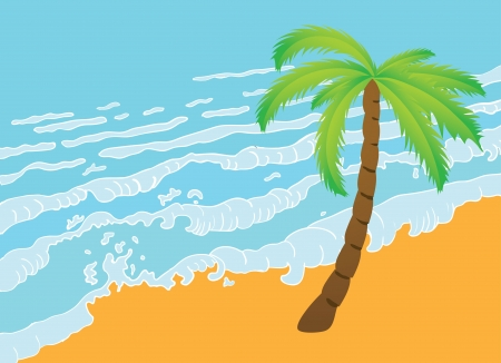 paradisiacal: Tropical palm on the beach with sea  Vector illustration