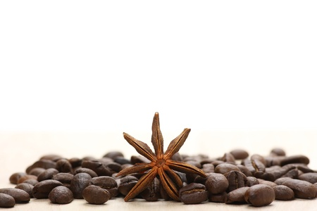 copyspase: Coffee and star anise on white