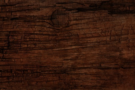 wood log: old cracked wooden surface background