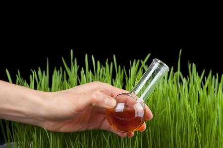 metodo cientifico: Mano con un tubo de ensayo y la hierba. Fertilizante Foto de archivo