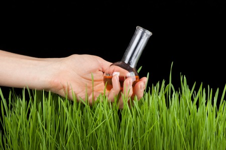Hand with a test tube and grass. Fertilizer photo