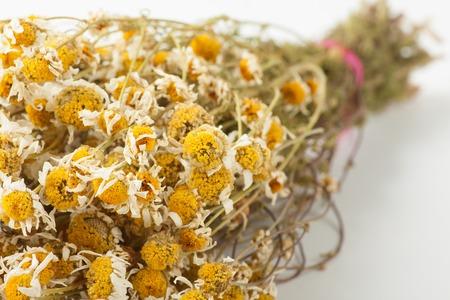 chamomilla: Dried chamomile on white background