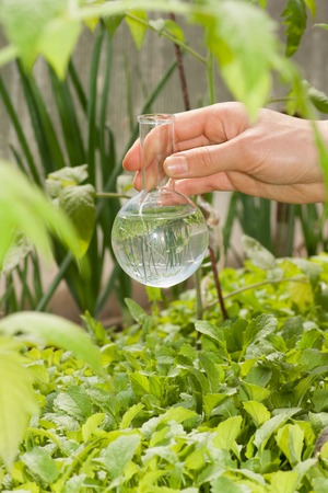 additional chemicals: flask with clear water or fertilizer,  liquid in glassware
