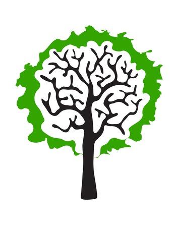 frondage: green tree isolated on white