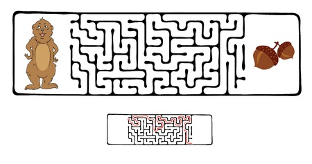 marmot: Maze, Labyrinth education Game for Children with Marmot and Nut.