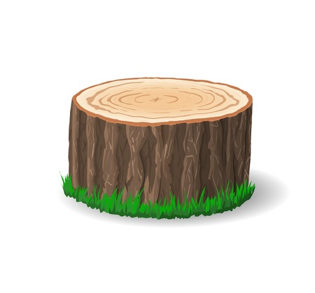 cut logs: Secci�n transversal del tronco de un �rbol, ilustraci�n vectorial, aislados en fondo blanco