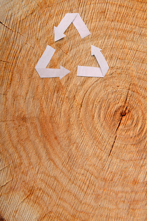 Close-up wooden cut and paper recycle symbol photo