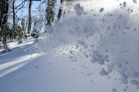 deep powder snow: spray snow, freeride in the winter mountains, snowboard or ski sport