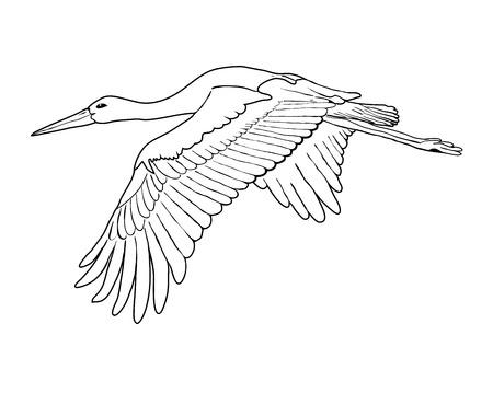 egret: Flying stork set, outline vector illustration
