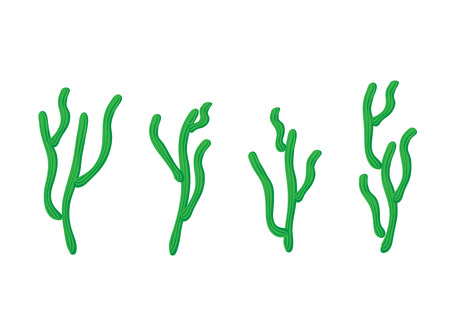 waterless: Cactus set, isolated illustration on white