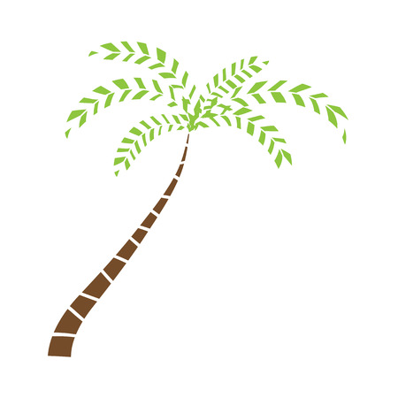 tree isolated: Palmera, ilustraci�n vectorial
