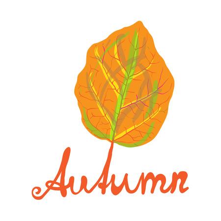 handwritten: Hand-written word AUTUMN and yellow leaf, lettering. Vector illustration Illustration