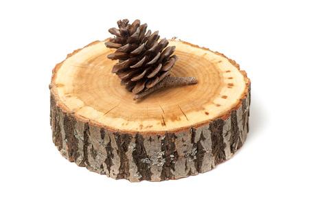 a cedar: cedro cono en la rebanada de madera, aislado en blanco
