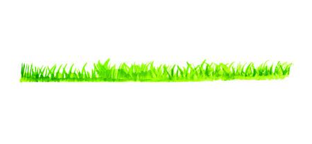 grass line: watercolor Green grass line, vector illustration