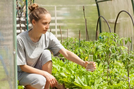young woman fertilizes plants from a glass bulb