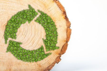 Biomass: Cross section of tree trunk with recycle symbol, isolated on white background Stock Photo