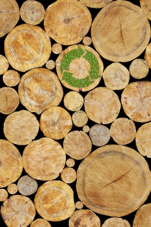 log wall: Stacked Logs with green plant recycle symbol, natural wood background Stock Photo