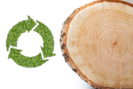 cut: Cross section of tree trunk with recycle symbol, isolated on white background Stock Photo