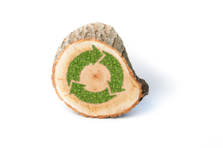 log on: Cross section of tree trunk with recycle symbol, isolated on white background Stock Photo