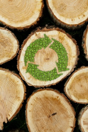 recycle icon: Stacked Logs with green plant recycle symbol, natural wood background Stock Photo