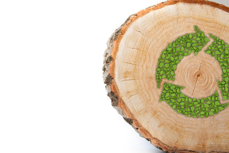 sustained: Cross section of tree trunk with recycle symbol, isolated on white background Stock Photo