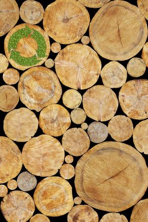 reciclar: Troncos apilados con verde s�mbolo de reciclaje de la planta, fondo de madera natural