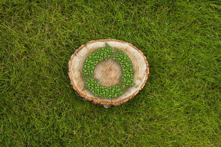 cut: tree stump on the green grass with recycle symbol, top view Stock Photo