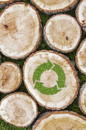 sustained: Tree stumps on the green grass with recycle symbol