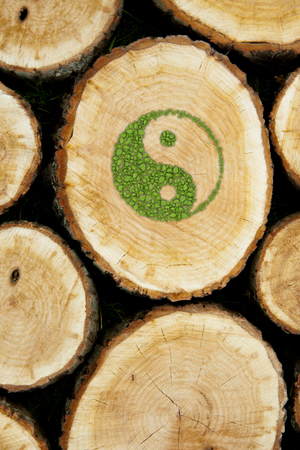 ying and yang: Stacked Logs Background with ying yang symbol of harmony.