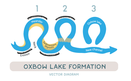 meandering: Oxbow lake formation diagram, vector illustration Illustration
