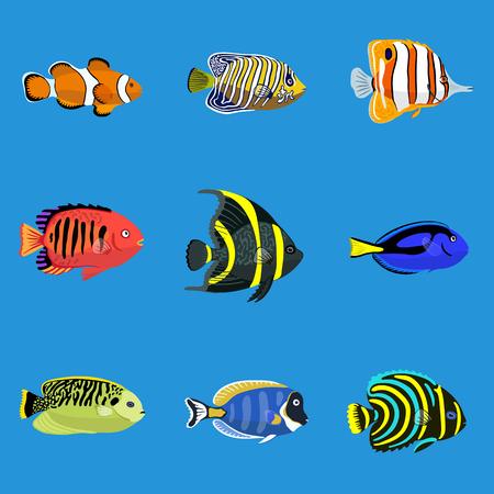 Conjunto de peces tropicales del océano. Ilustración vectorial, aislado en el fondo azul. Ilustración de vector