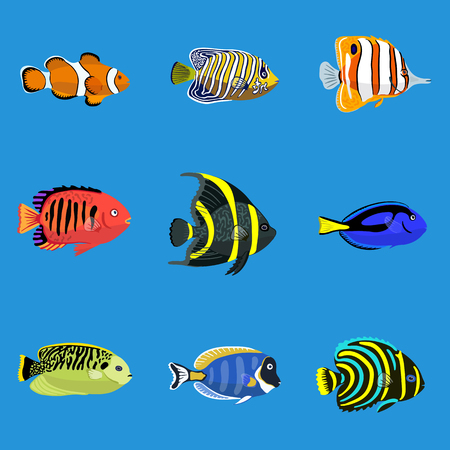 Set of tropical ocean fishes. Vector illustration, isolated on blue background.