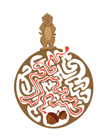 marmot: Vector maze puzzle for kids with Marmot and Nut, labyrinth illustration with solution. Illustration