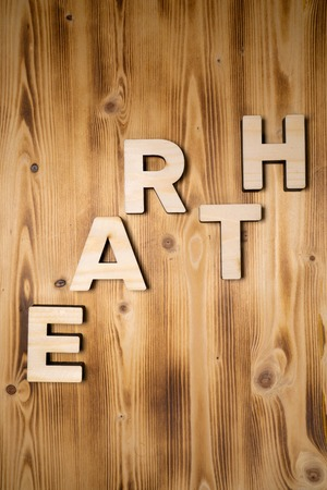 EARTH word made with building blocks on wooden board Stock Photo