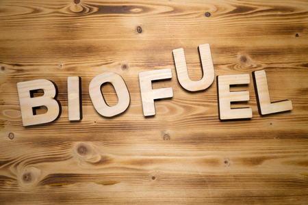 BIOFUEL word made with building blocks on wooden board