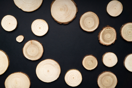Pine tree cross-sections with annual rings on black background. Lumber piece close-up, top view.