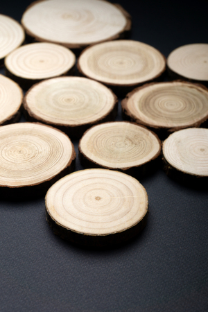 Pine tree cross-sections with annual rings on plane black surface. Lumber piece close-up.