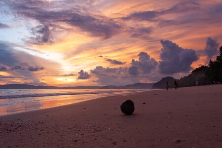 Sunrise on tropical beach with a coconut fruit lying on the sand.