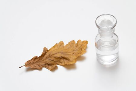 Oak tree leaves and glass bottle isolated on white background