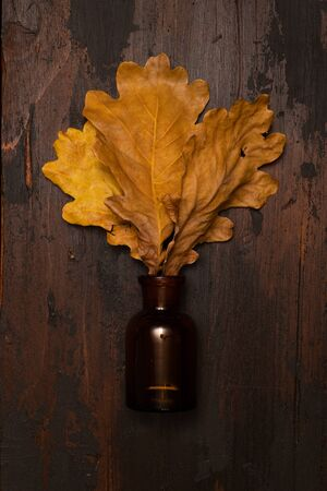 Dried oak tree leaves in a small bottle on a wooden surface. Autumn still life concept. Banco de Imagens