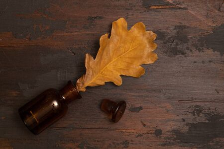 Dried oak tree leaf in a small bottle on a wooden surface. Autumn still life concept.