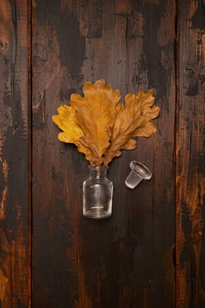Dried oak tree leaves in a small bottle on a wooden surface. Autumn still life concept. Фото со стока