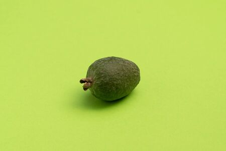 Fresh feijoa fruit on bright green surface. Studio close-up shot.