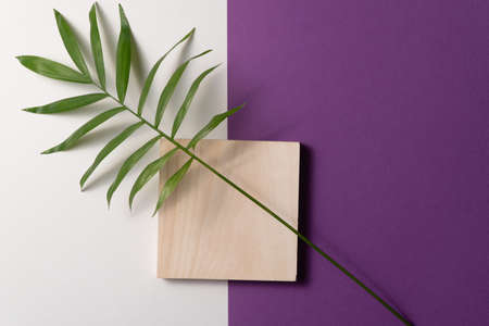 Tropical leaf and square wooden block on violet and white paper background. Flat lay, top view, minimal design template with copyspace