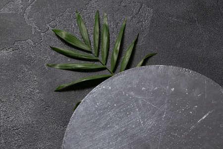 Green plant leaf on dark concrete background. Flat lay, top view, minimal design template with copyspace Reklamní fotografie