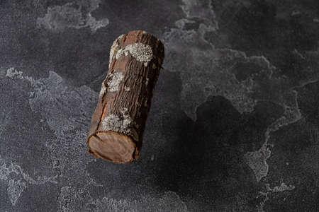 Section of tree trunk hovering over dark concrete surface. Reklamní fotografie