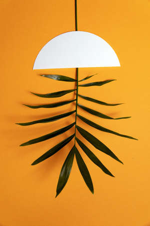 Concept photo on the theme of green energy. Alternative energy source. A branch of a green plant instead of a lamp in the ceiling Reklamní fotografie
