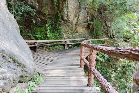 boardwalk trail: Op luang National Park in Chiangmai Thailand